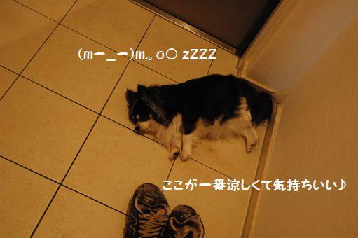 なでしこJAPAN! 022.JPG