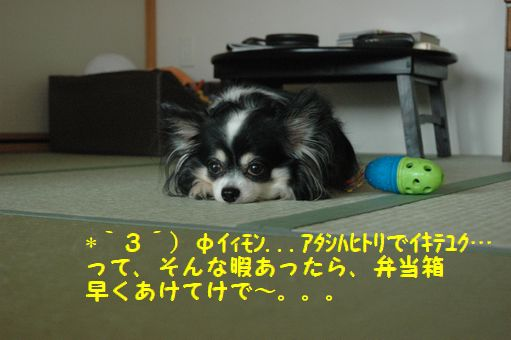 八幡まつり 004.JPG