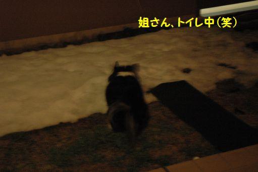 姐さんの一日(平日編) 026.JPG