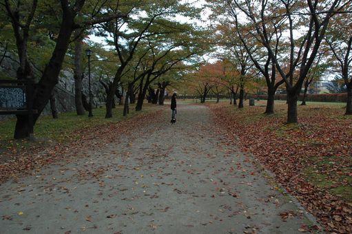 岩手公園 059.JPG
