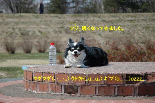 日時計で、ご休憩♪ 053.JPG