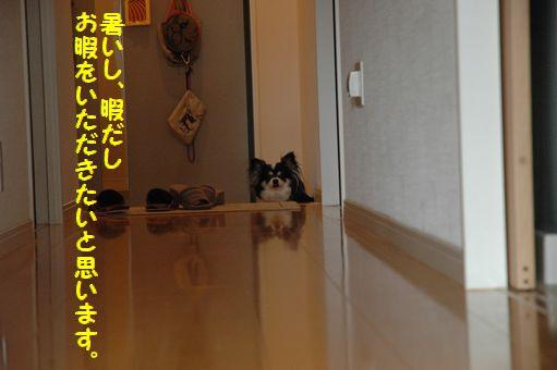 海の日@2012 035.JPG