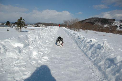 雪ん子たち2011 041.JPG