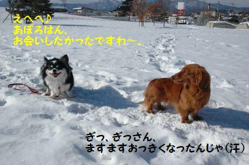 雪ん子たち2011 060.JPG