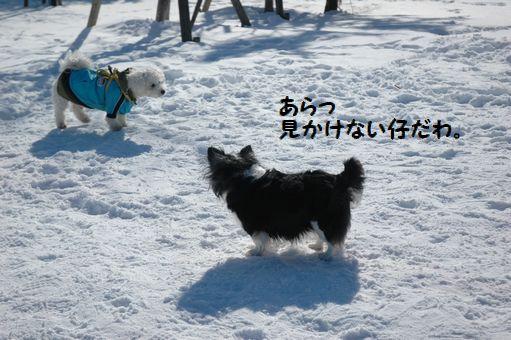 雪ん子たち2011 079.JPG