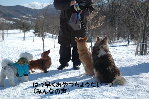 雪ん子たち2011 093.JPG