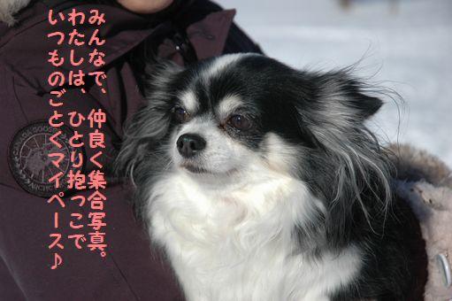 雪ん子たち2011 113.JPG
