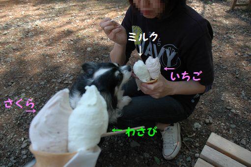 ギズコin雫石 049.JPG