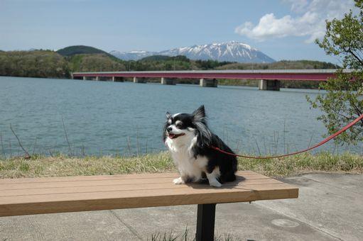 ギズコin雫石 058.JPG