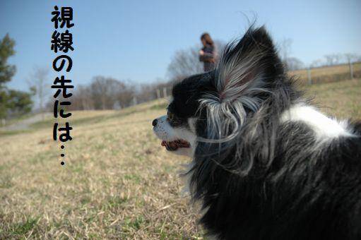 EITAROUさん 014.JPG