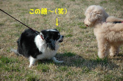 EITAROUさん 016.JPG