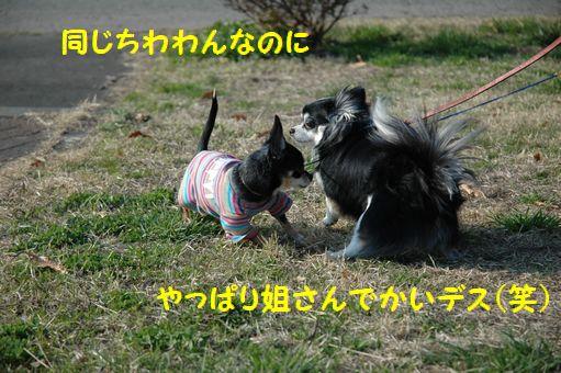 EITAROUさん 017.JPG