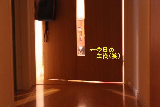 IMG_0042.JPG
