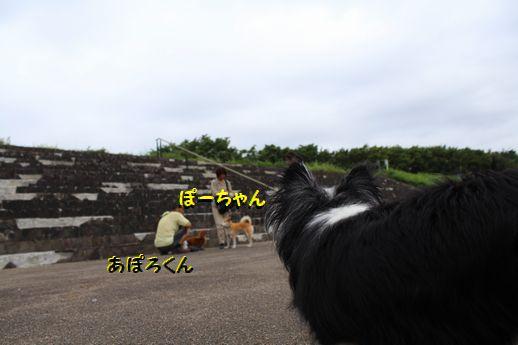 IMG_0177.JPG