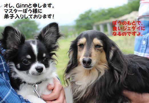 IMG_6088 - コピー.JPG