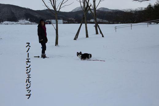 IMG_8379.JPG