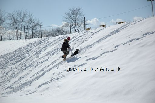 M.ダックス! 052.JPG