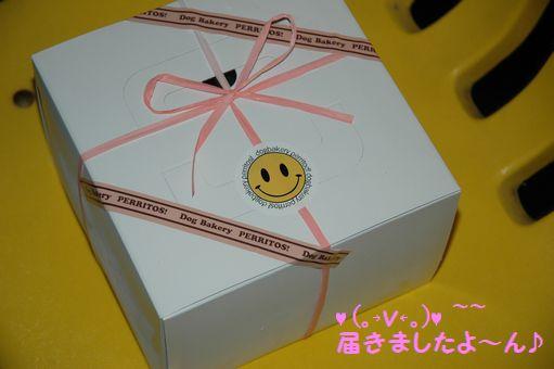 Project姐さん生誕祭 004.JPG